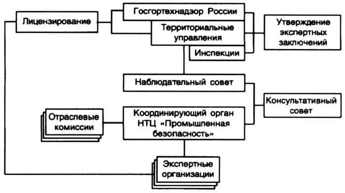 Принципиальная схема организации экспертизы промышленной безопасности.  Заказчик.  Улица.